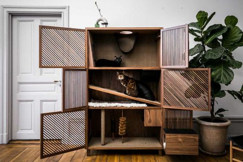 A Modern Flat Designed for Cats